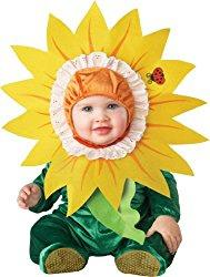 costumesunflower