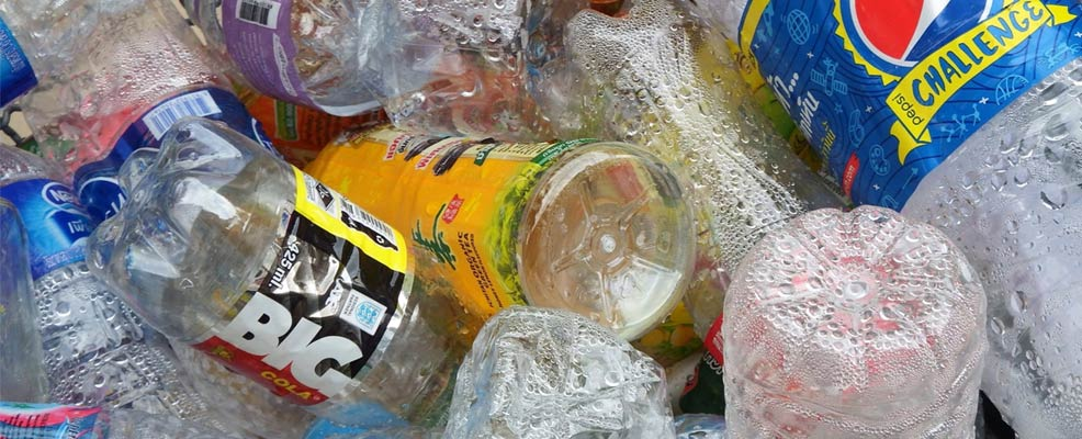 Dangers of plastics during pregnancy phthalates bpa