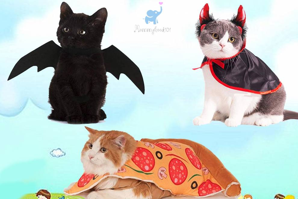 Halloween Costumes for Cats? Count me in!